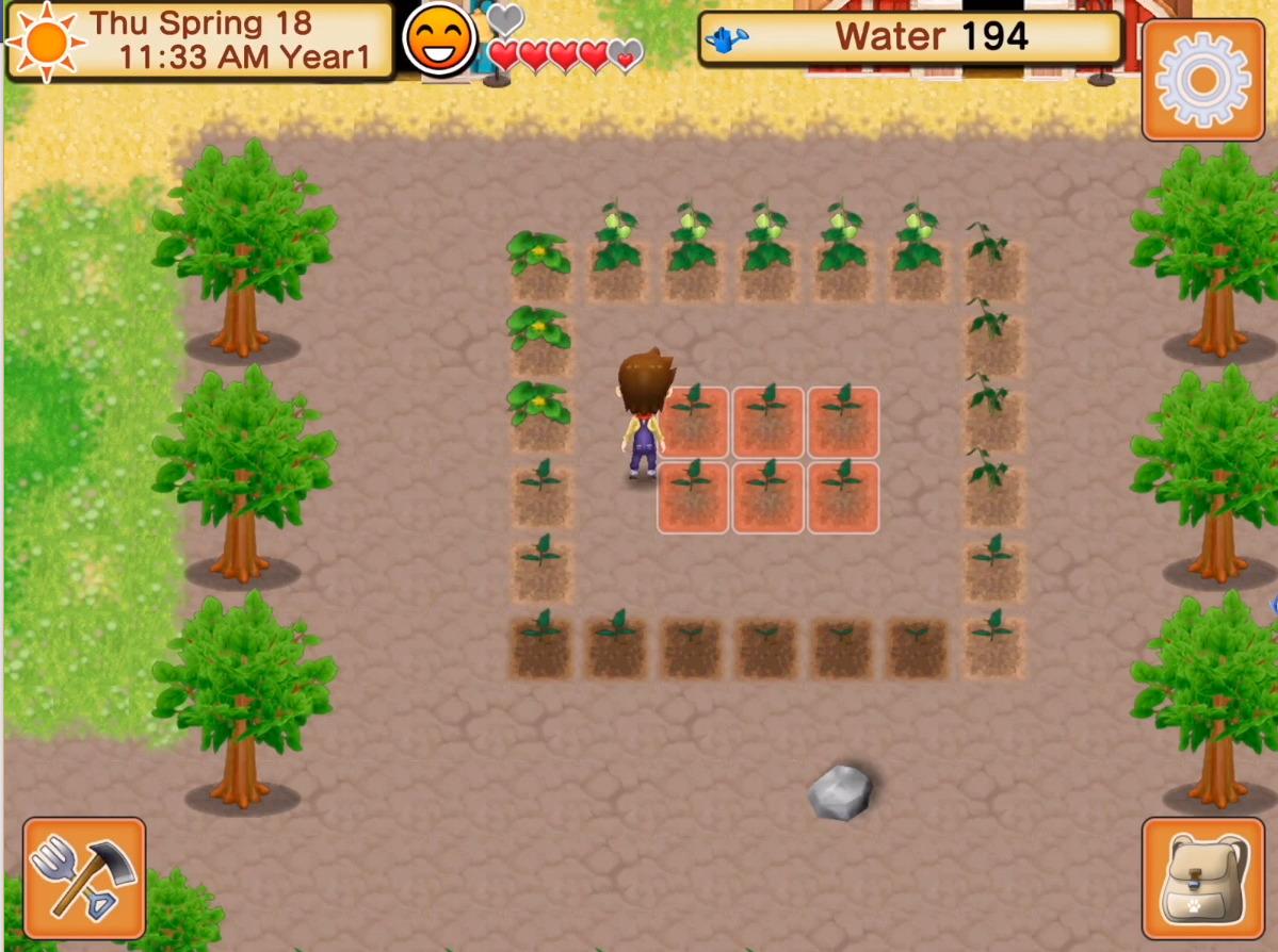Screenshot Harvest Moon: Seeds Of Memories